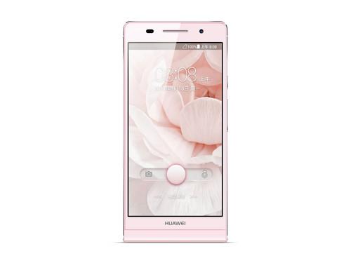 P6 Pink 3425297_13213213212
